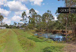 Land Pond - 54-58 Granger Road Park Ridge South